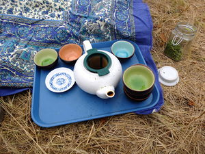 Tactical Tea on the Field - Camp 2015