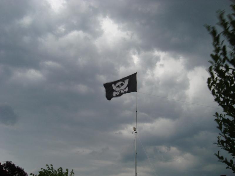 cosin-flagge